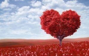 Совместимость имени Айсель, проявление в любви