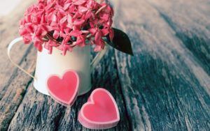 Совместимость имени Бажена, проявление в любви